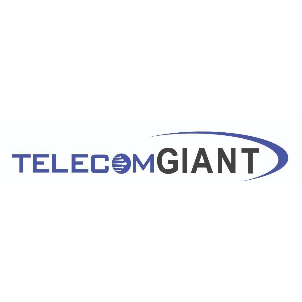 Telecom Giant image 3