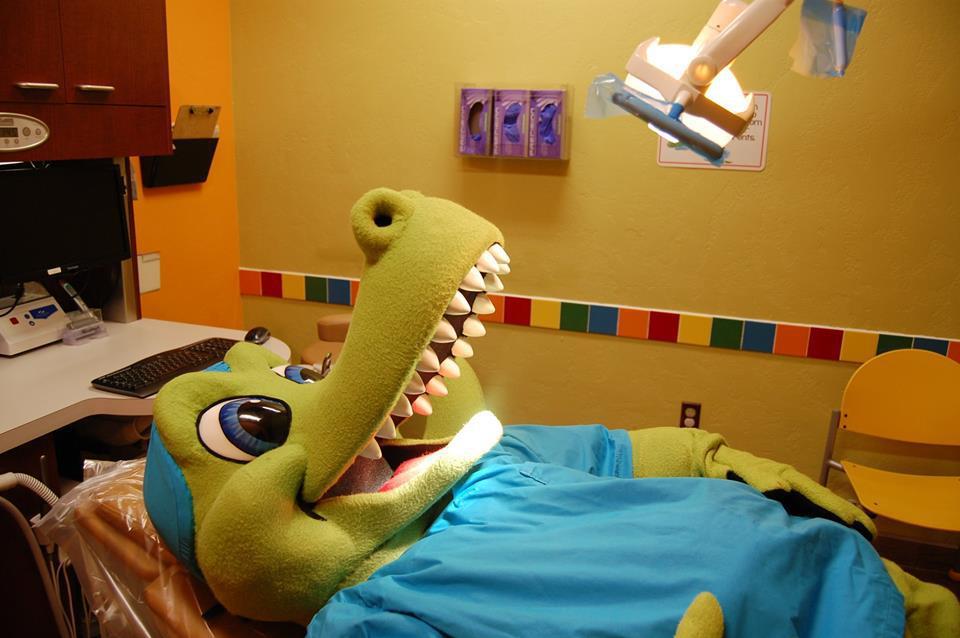The Croc Doc image 8