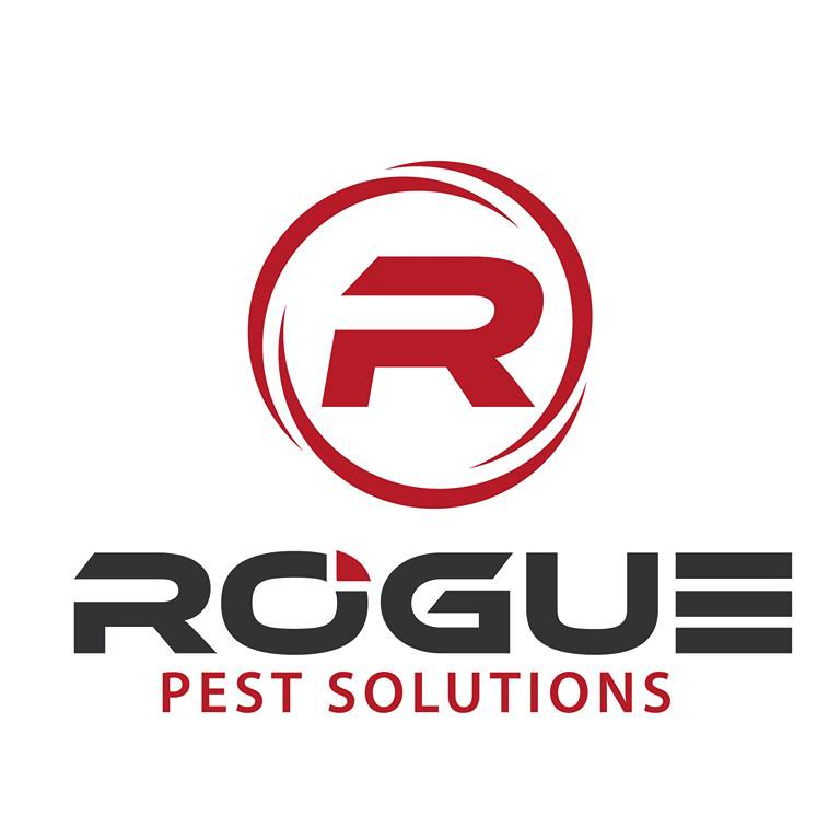 Rogue Pest Solutions image 9