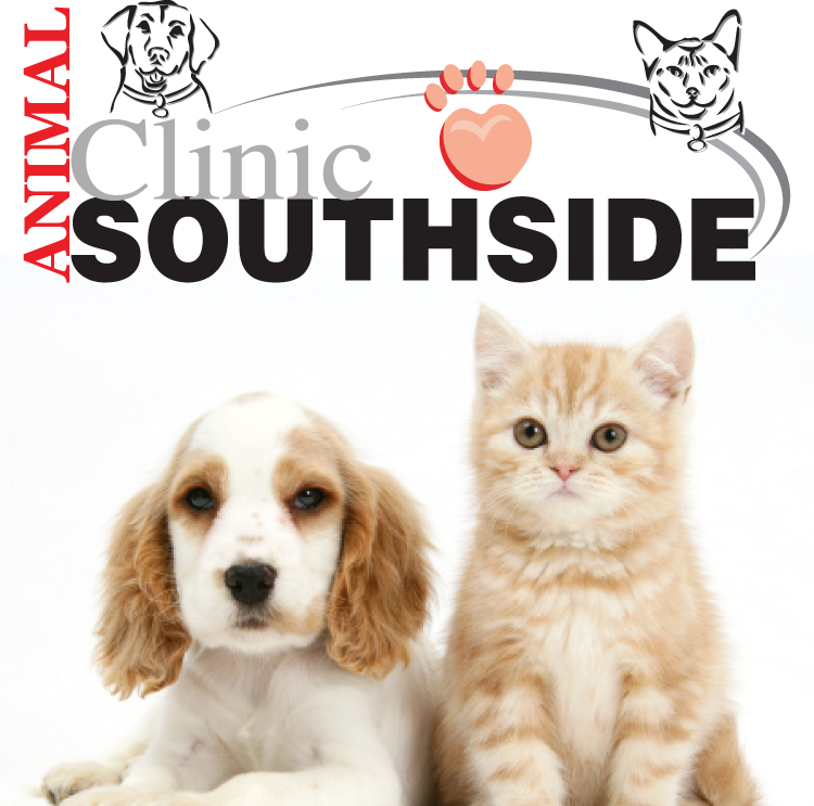 Animal Clinic Southside image 2