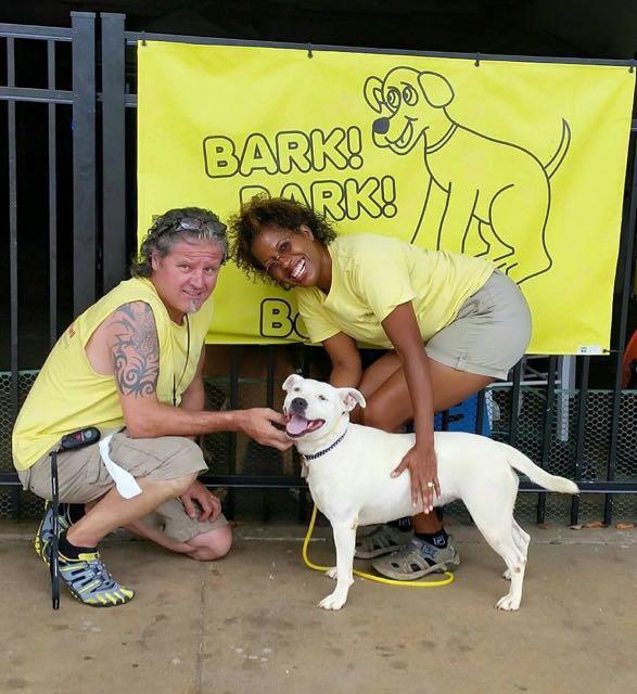 Bark! Bark! Backyard image 0