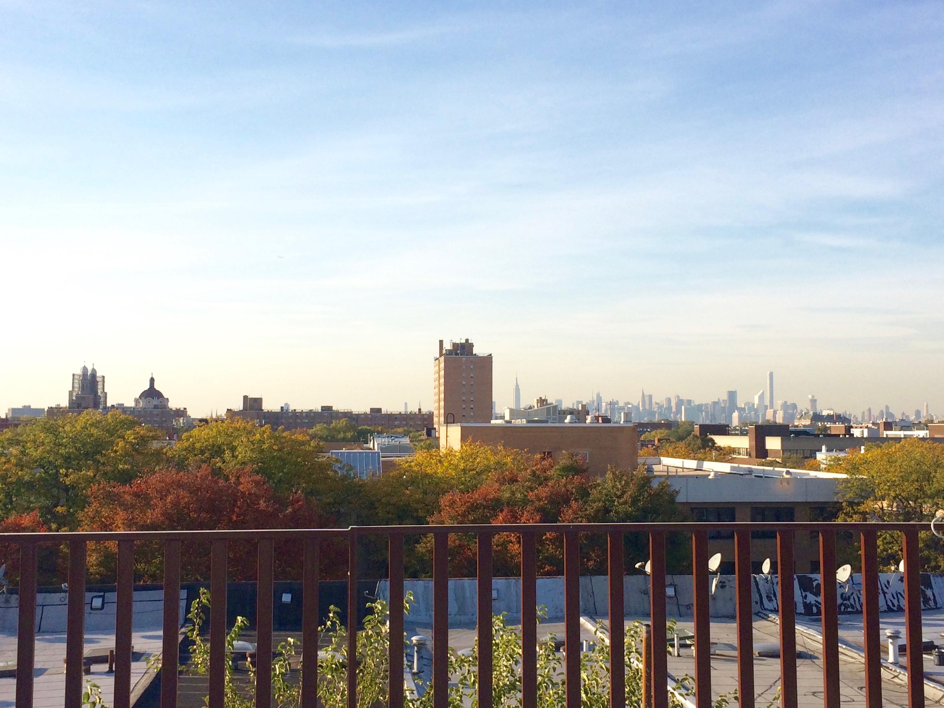 Bushwick: large 3 bedroom. Newly renovated, Laundry in building, video intercom. Rooftop access.