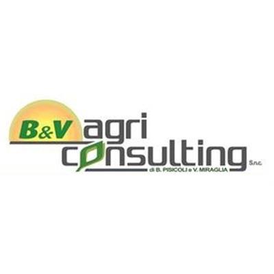 B&V Agriconsulting