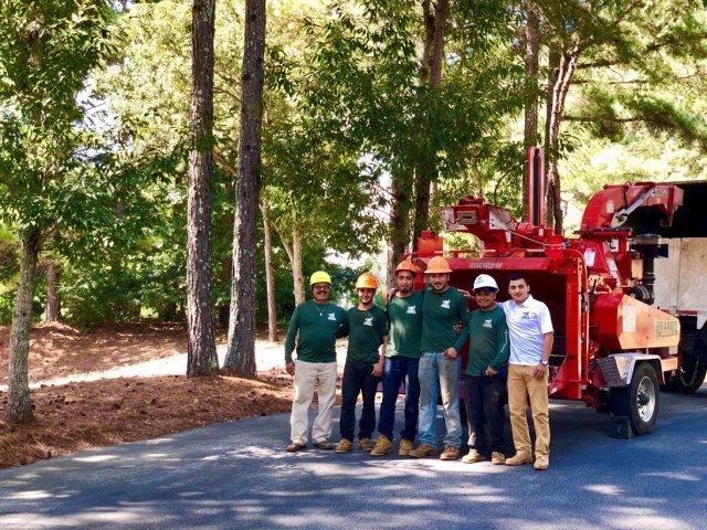 #1 Tree Service of Georgia LLC. image 0