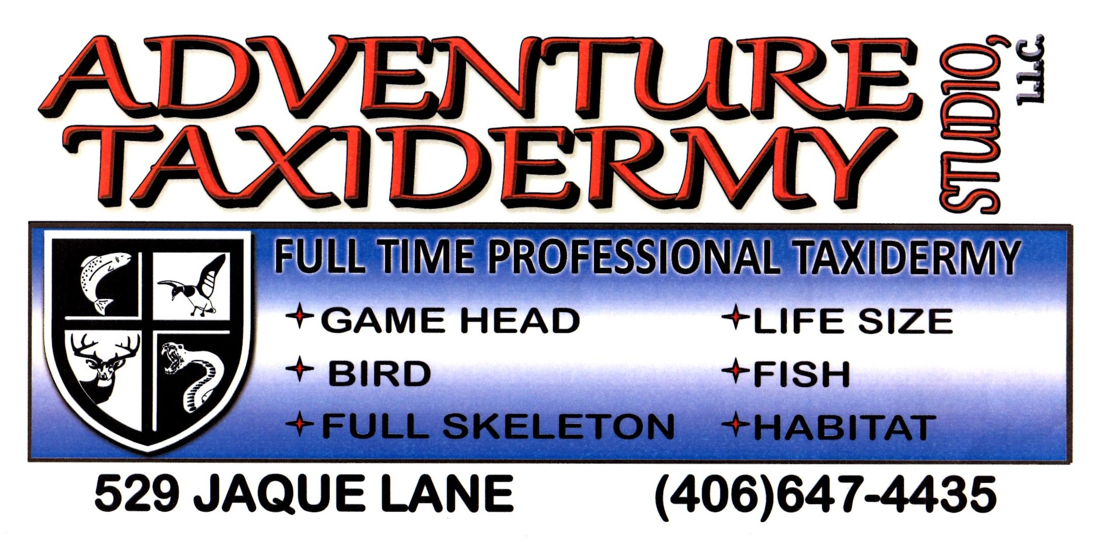 Adventure Taxidermy Studio, L.L.C. image 0