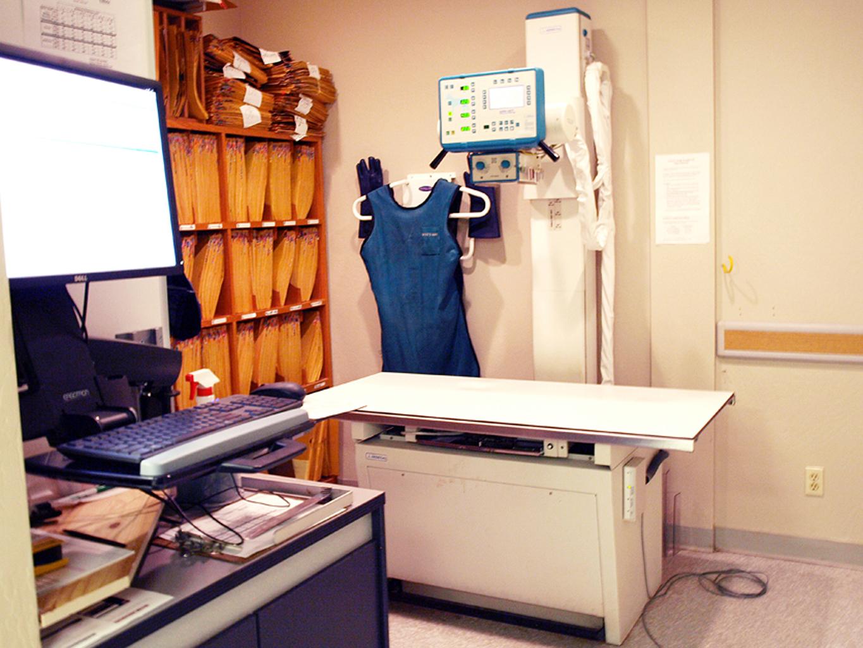 VCA Big Lake Animal Hospital image 7