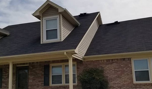 Bad Bear Roofing & Construction