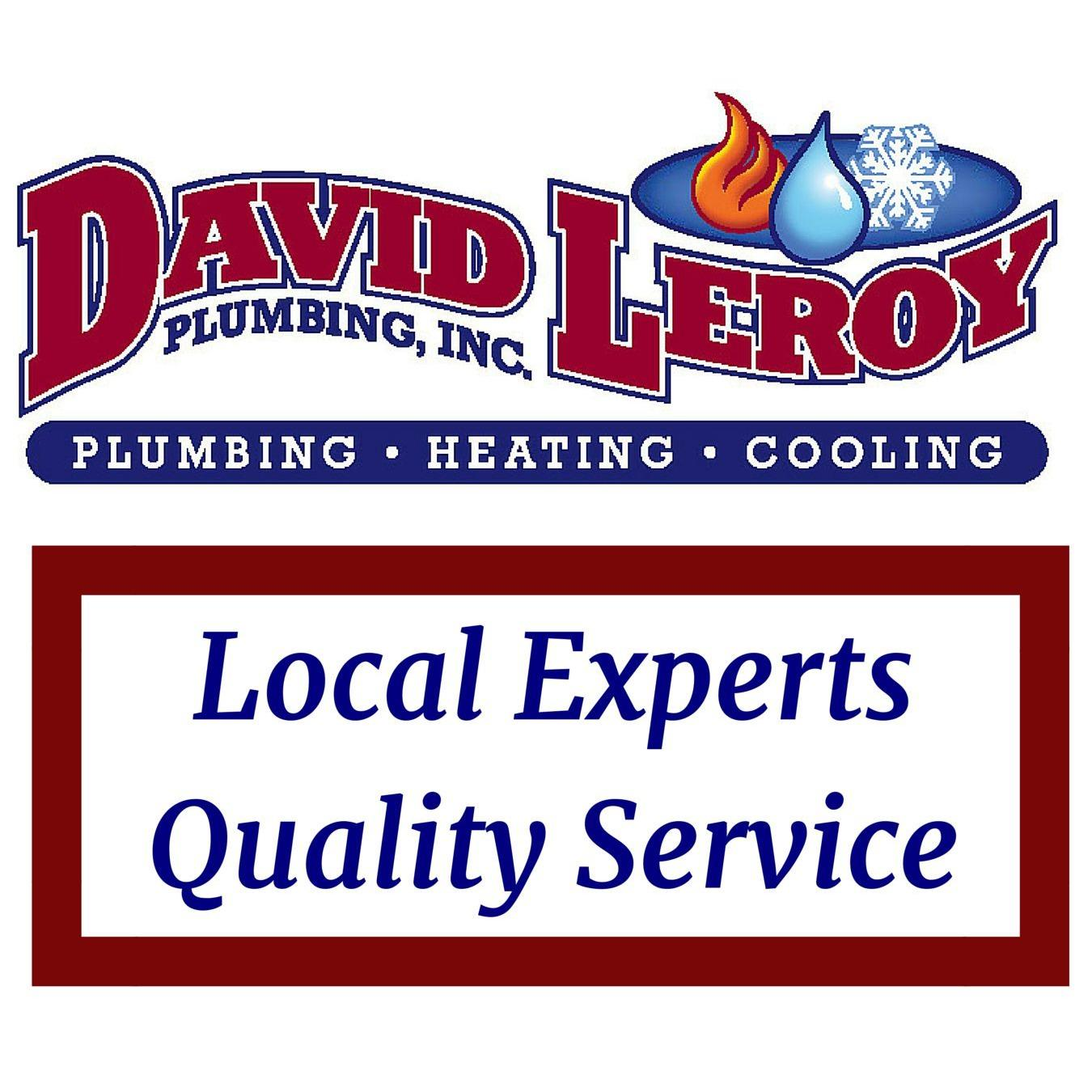 David Leroy Plumbing Inc.