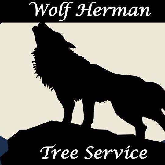 Wolf Herman Tree image 24