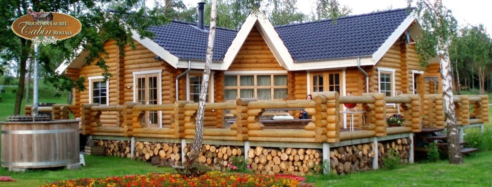 Mountain laurel cabin rentals blue ridge ga resorts for Mountain laurel cabin rentals blue ridge ga