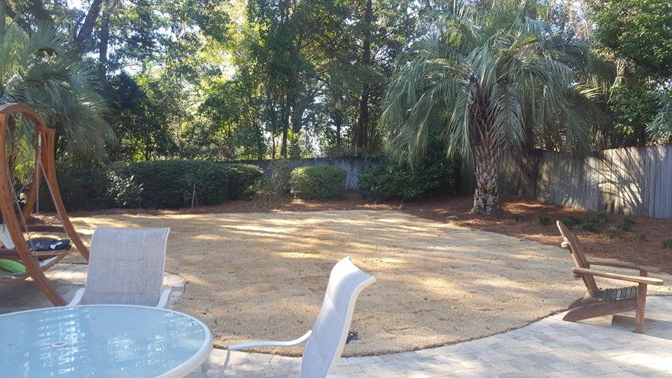 DC Lawn & Landscape, LLC image 12
