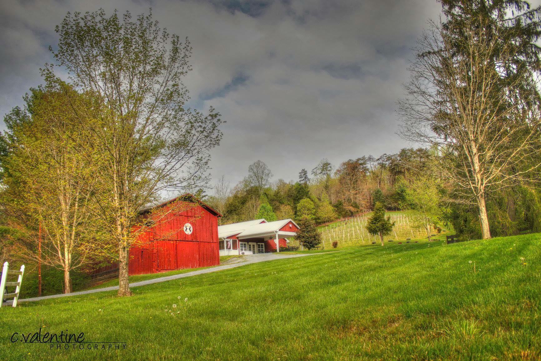 Maple Lane Farm image 1