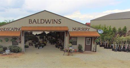 Baldwin's Customized Landscaping image 0