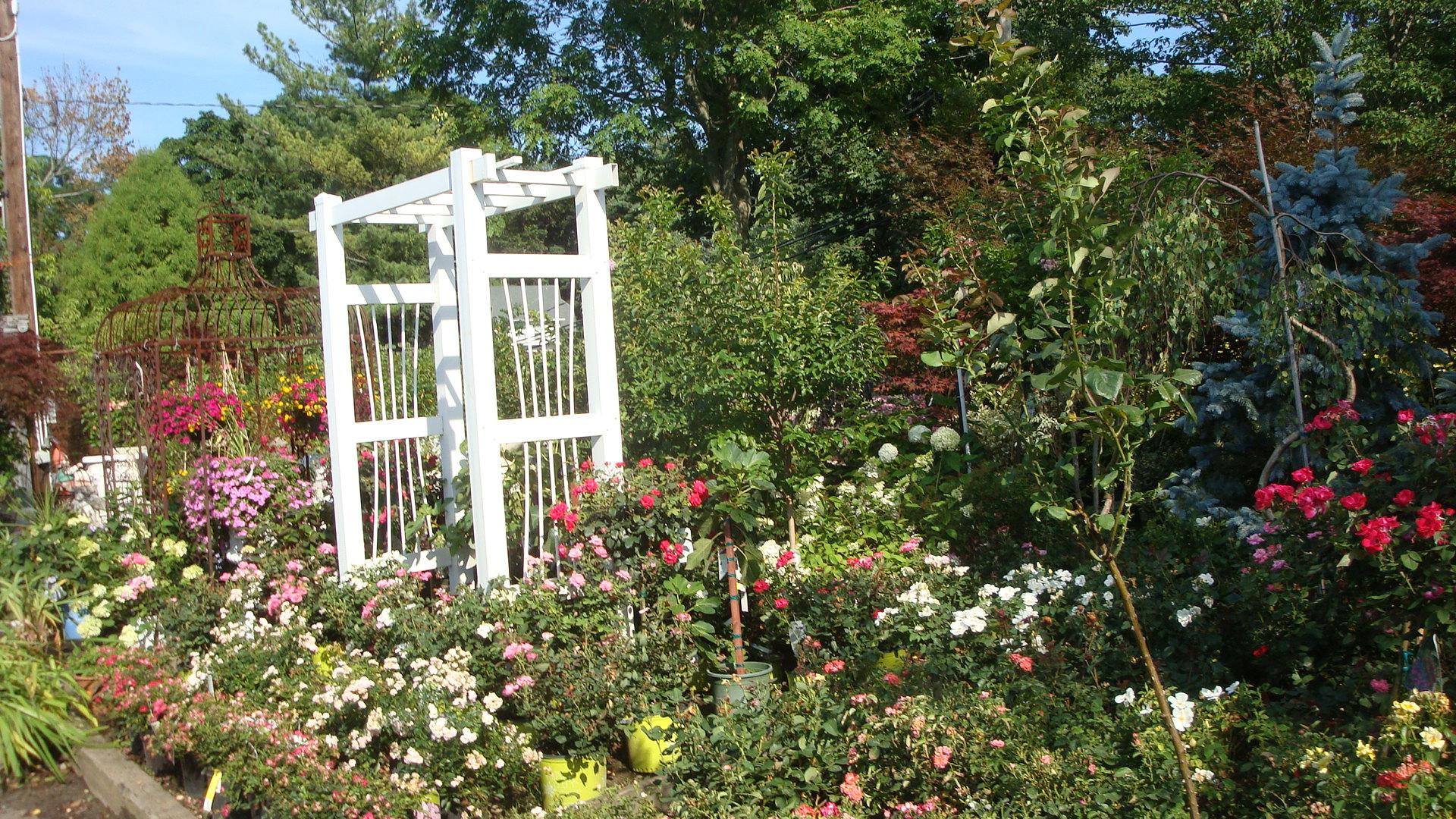 Tony Distefano Landscape Garden Center image 10