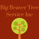 Big Beaver Tree Service Inc