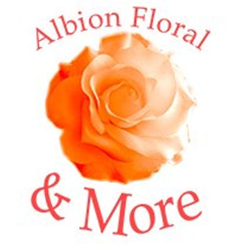 Albion Floral & More image 8