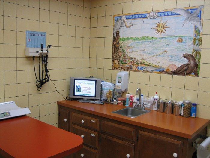 Vca Coast Animal Hospital Hermosa Beach Ca