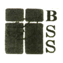 Blessings Social Service Inc