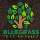 Bluegrass Tree Service, LLC image 2