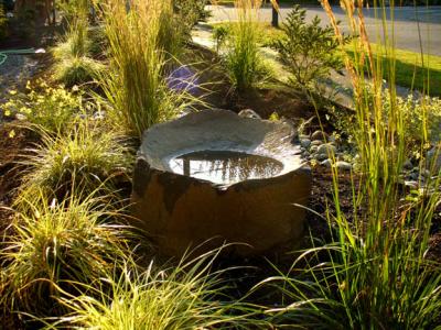 Solstice Landscape Design image 15