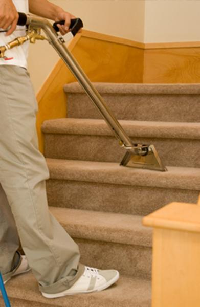 Eco-Buddy Carpet Cleaning