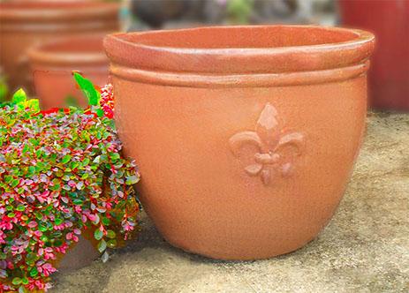 Charvet's Garden Center Inc image 1