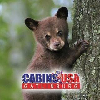Cabins USA Gatlinburg
