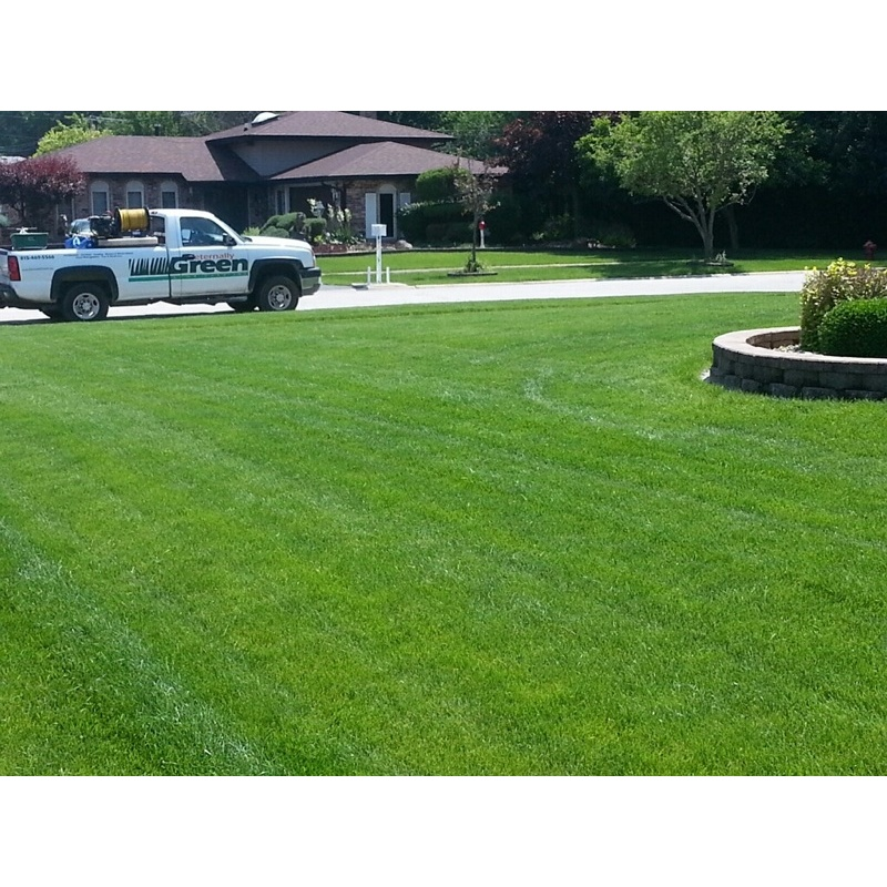 Eternally Green Lawn Care