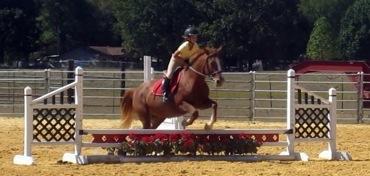 Salem Equestrian Center image 8