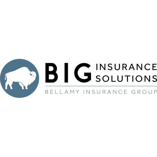 BIG Insurance Solutions