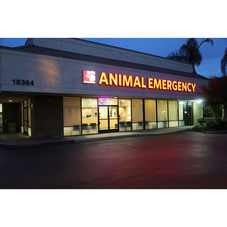 crossroads animal emergency coupons near me in huntington
