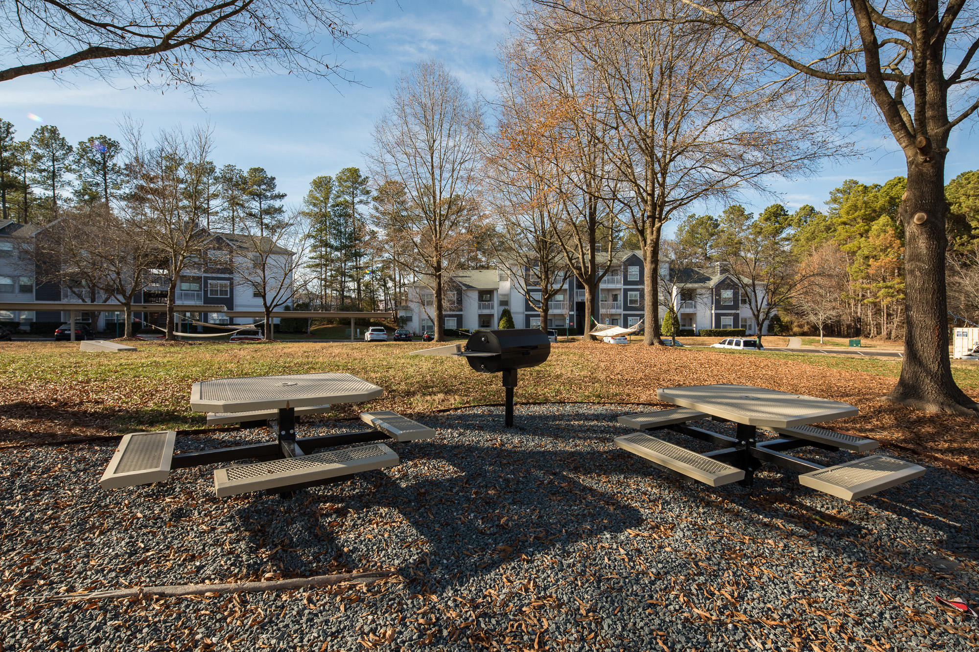 Arboretum at Southpoint by Cortland image 6