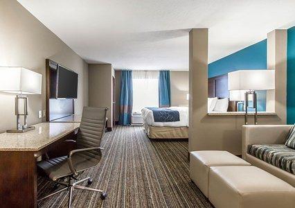 Comfort Suites Las Cruces I - 25 North image 11