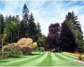 A-1 Landscape Contractors image 0