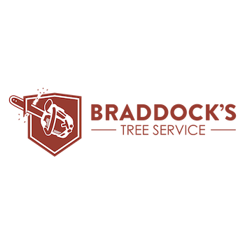 Braddock's Tree Service