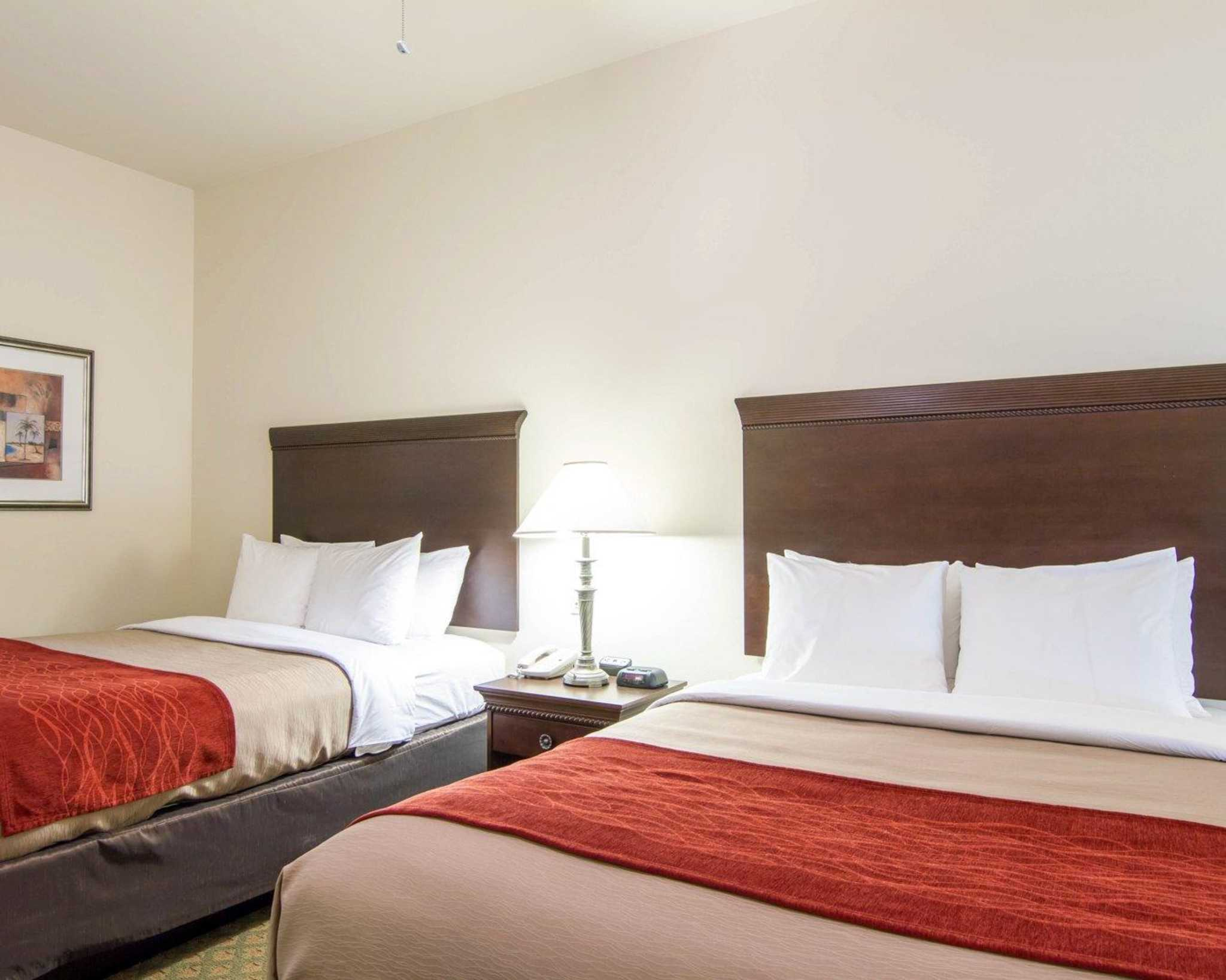 Comfort Inn & Suites Airport image 7