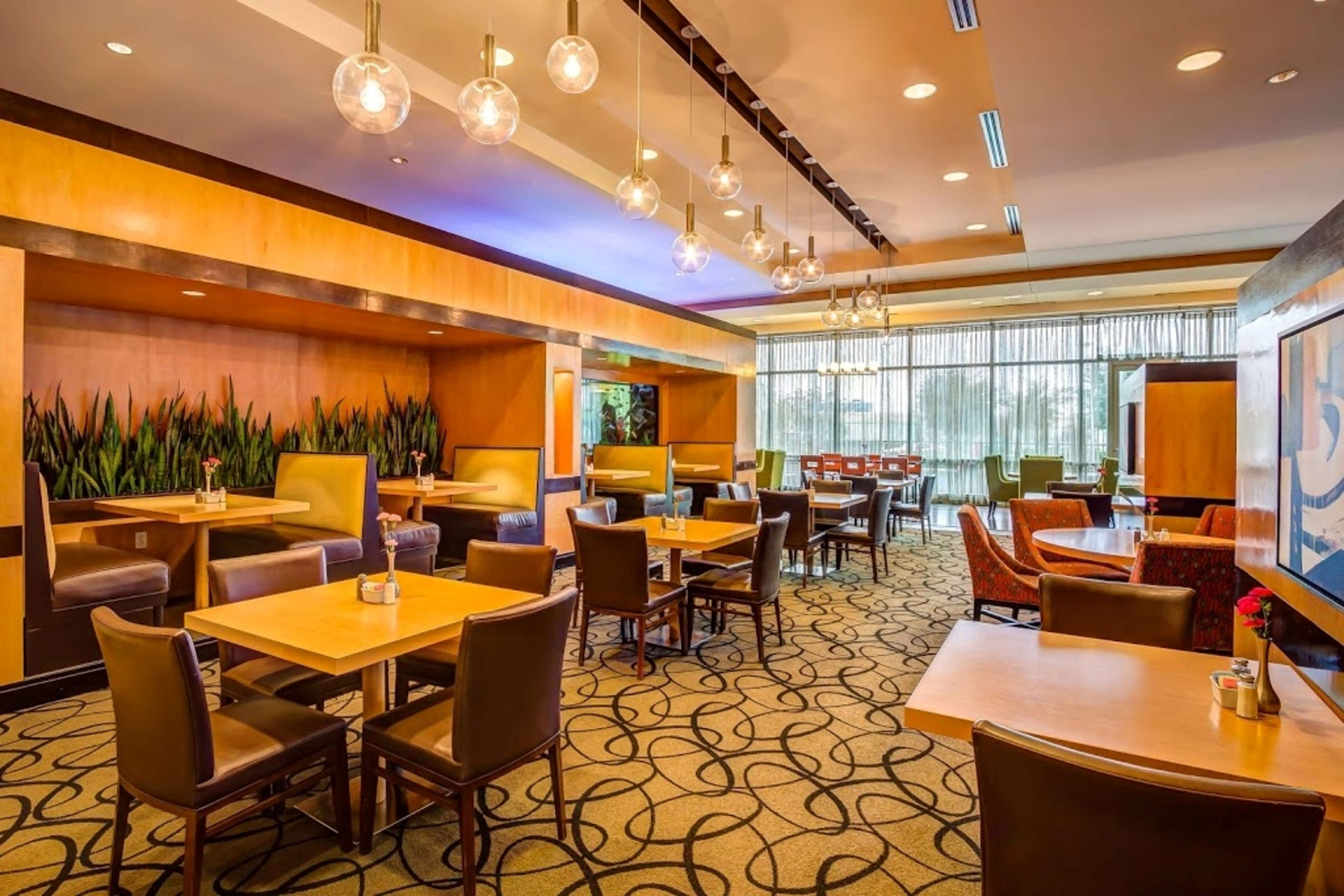 Embassy Suites by Hilton Houston Energy Corridor image 15