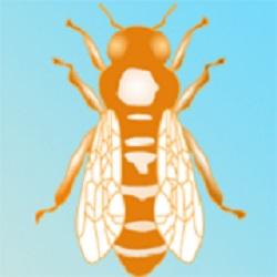 Logo von kennzeichenbiene.de