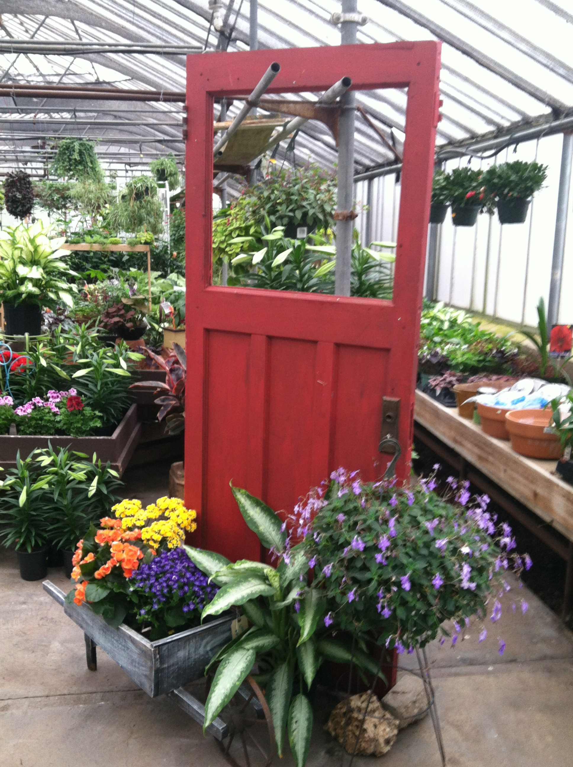 May's Floral Garden Inc