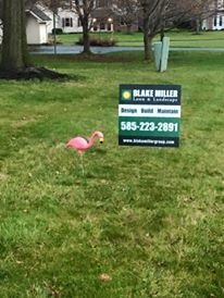 Blake Miller Lawn & Landscape image 2