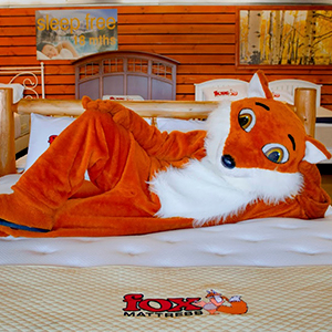 Fox Mattress image 2