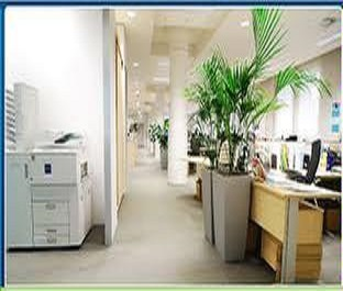 Right Way Cleaning Services image 1