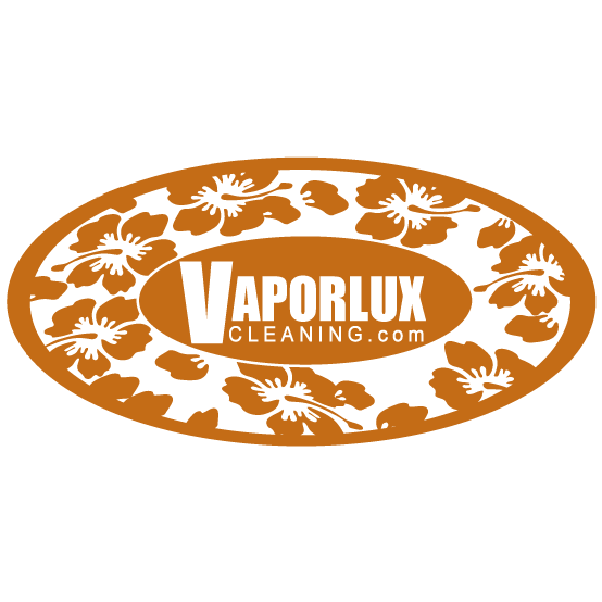 Vaporlux Tile & Stone Cleaning