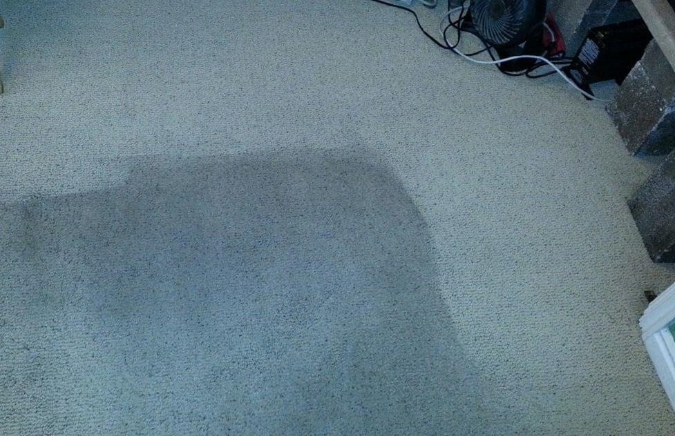 Gordon's Carpet Cleaning image 3