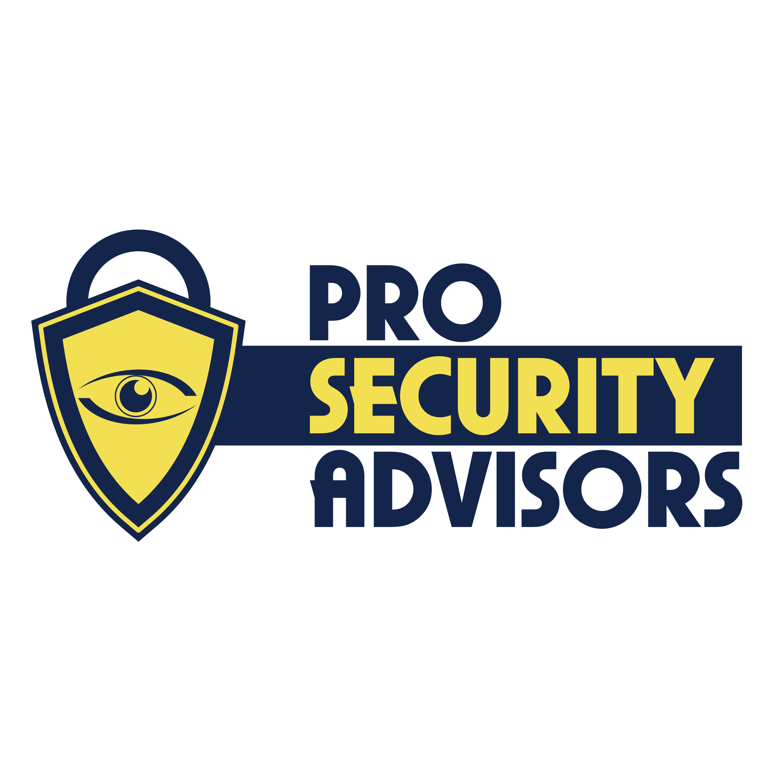 Pro Security Advisors image 0