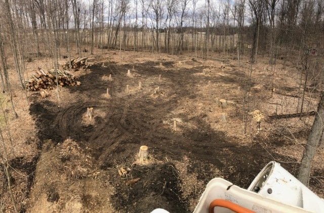 Huffman Tree Company image 4