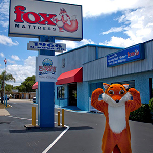 Fox Mattress image 0