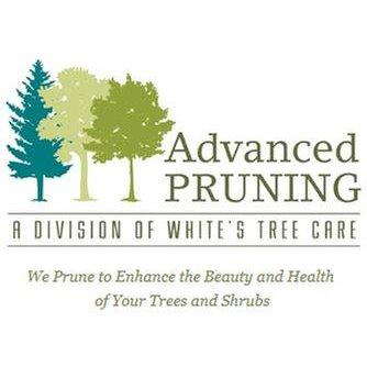 Advance Pruning - Olympia, WA - Tree Services