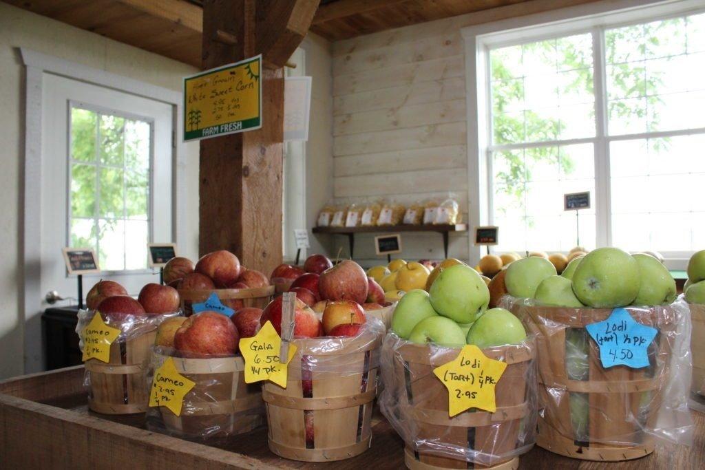 Kissel Hill Fruit Farm image 0
