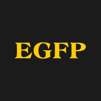 Eisenstat Gabage & Furman Pc